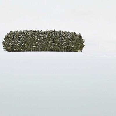EssensART 2011 • Deutscher Wald